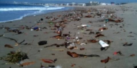 Spiagge italiane invase dai rifiuti