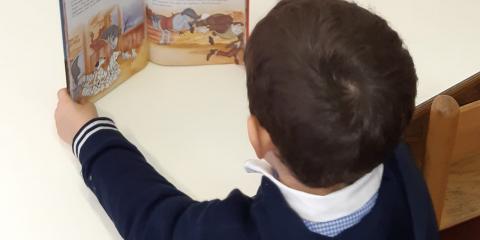 Bimbo legge un libro